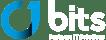 BIT-Logo-rgb
