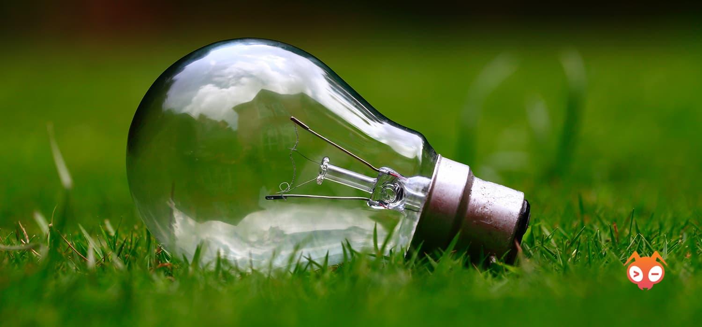 lightbulb in grass